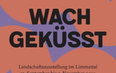 Aide à l'organisation du concours Wachgeküsst, Limmattal